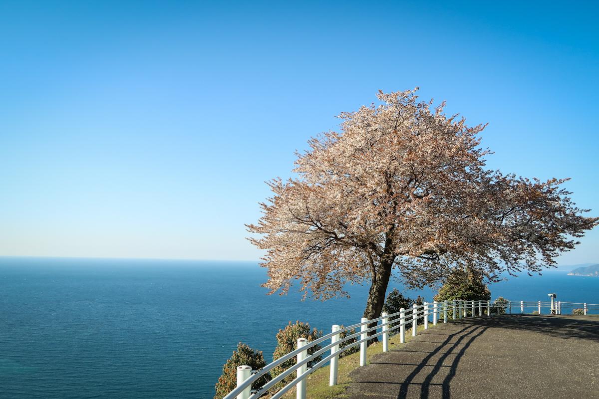 Mer Du Japon Fallengodess